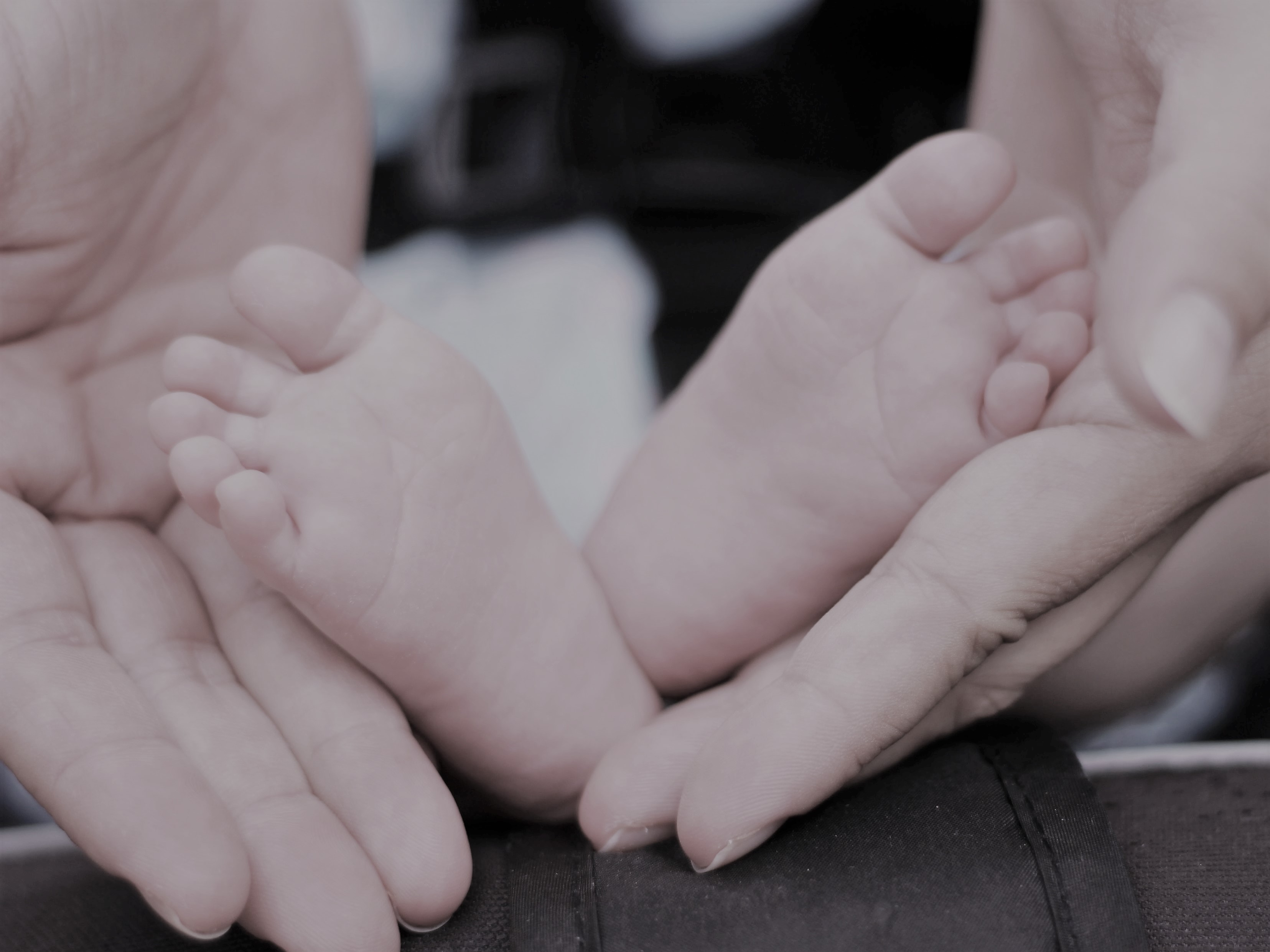 Image of adult hands holding baby feet