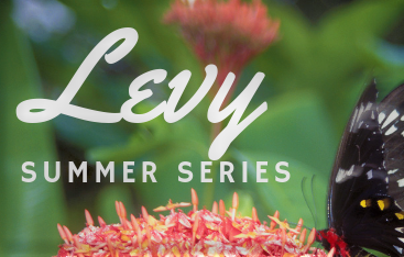 Levy Summer Series 2020